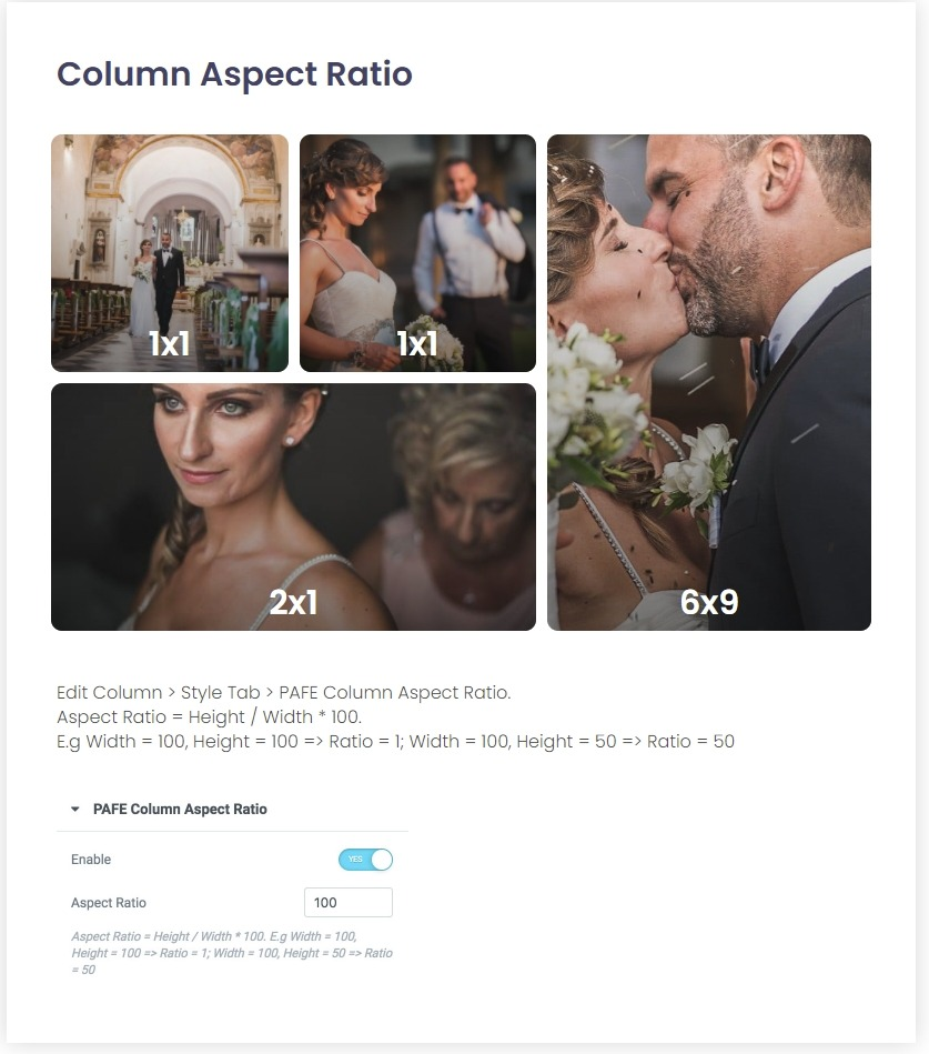 Column Aspect Ratio - PAFE